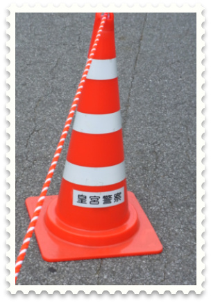 RIMG0474-001.JPG